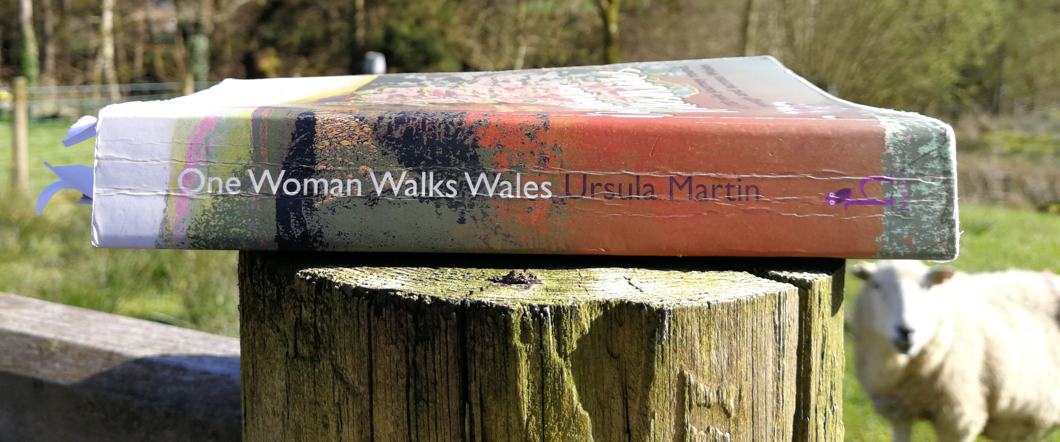 I wrote a book about a walk in Wales